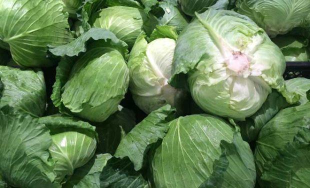 Kış sebzelerinden beyaz lahana