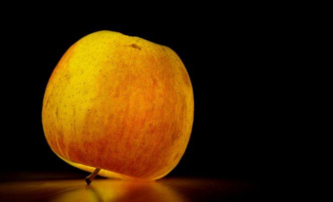 Gıda güvenliği ile ilgili temel bilgiler