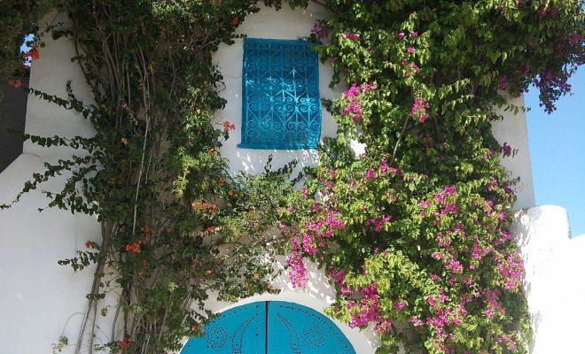 Bahçenizde dekoratif ve rahat bir görünüm yaratabilirsiniz