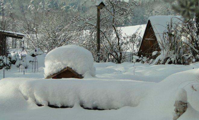 Kış için peyzaj düzenlemesi