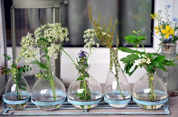 Çiçeklerin köklendirilmesi