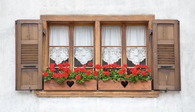 Ahşap pencere
