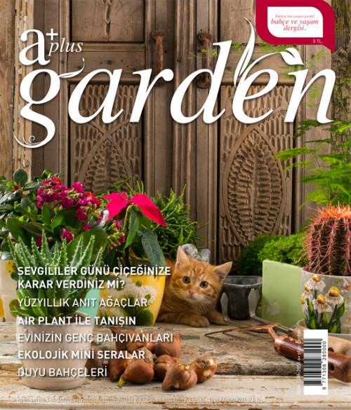 A Plus Dergisi