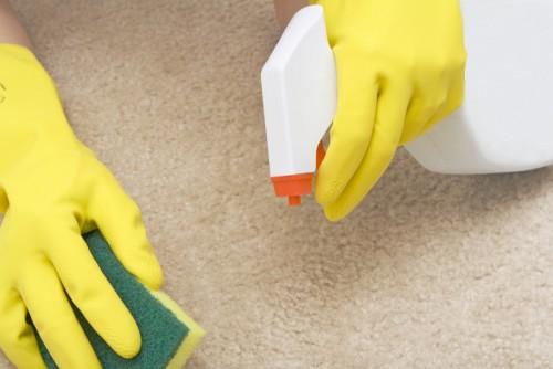 Halı temizliği