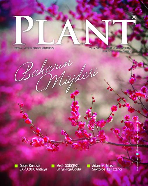 Plant Dergisi