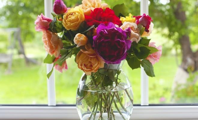 Vazo Çiçeklerinin Bakımı