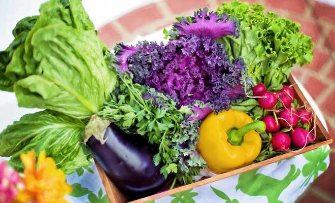 Sonbaharda Bahçe ve Balkonda Yetiştirebileceğiniz Sebzeler