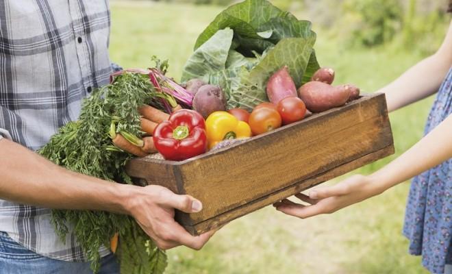 Bilinçli Organik Gıda Tüketicisi Eğitimi