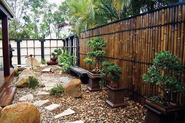 Bambu Çit-2