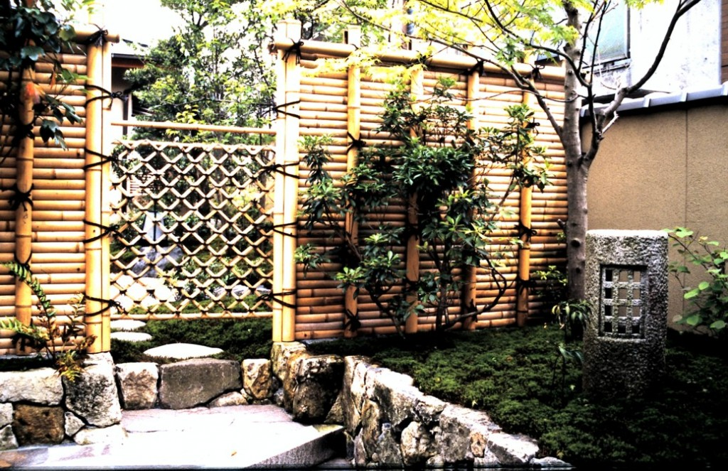 Bambu Çit-5