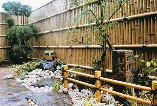 Bambu Çit