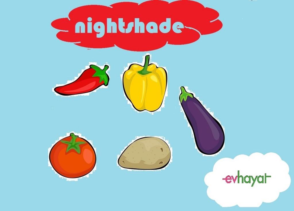 nightshades-sebzeler