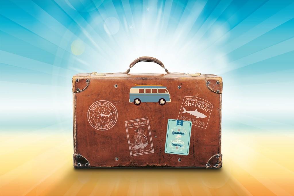 valiz (2)