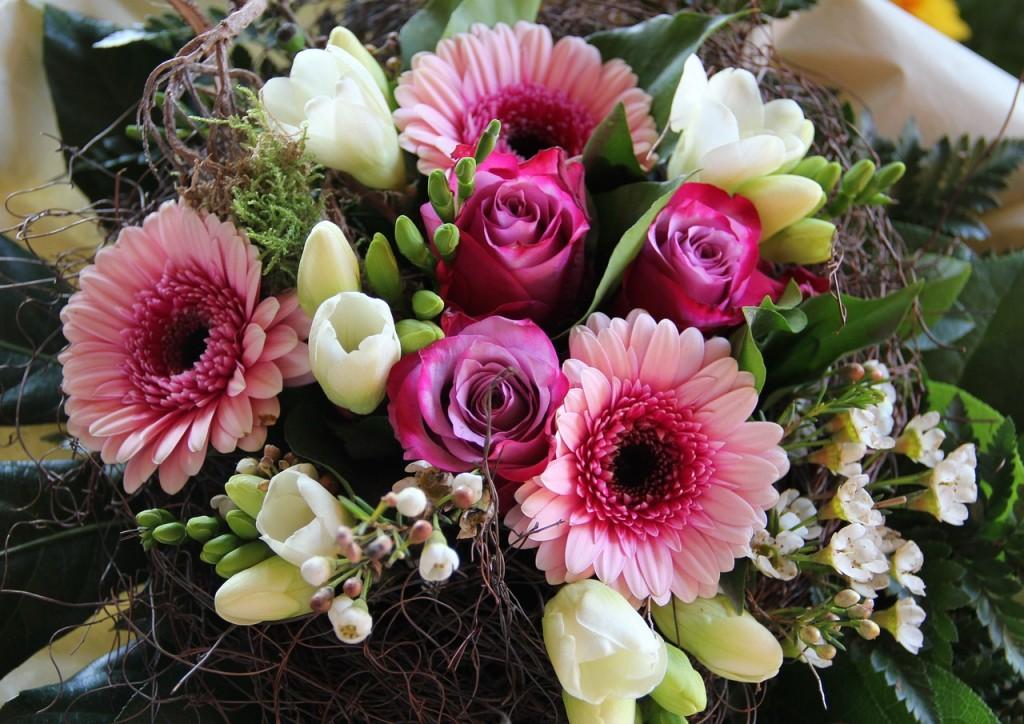 gelin çiçeği (2)