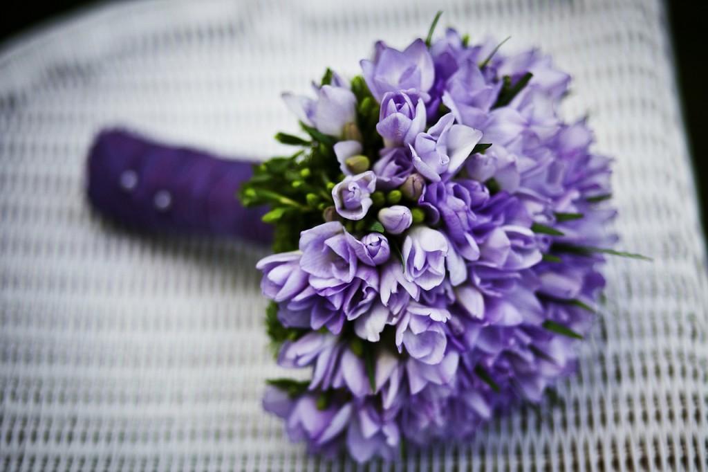 gelin çiçeği (4)