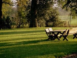 piknik (3)