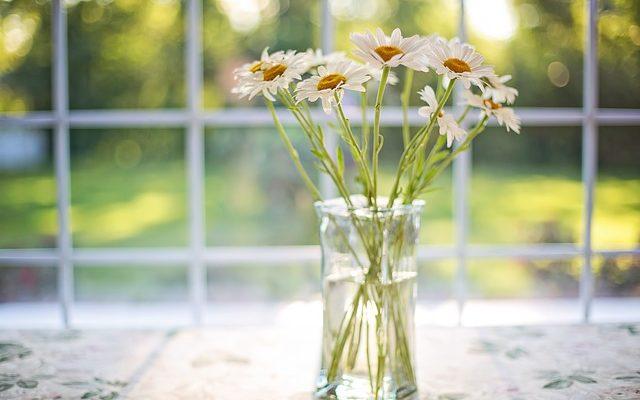 Vazo Çiçeklerinin Solmaması İçin Ne Yapılır?