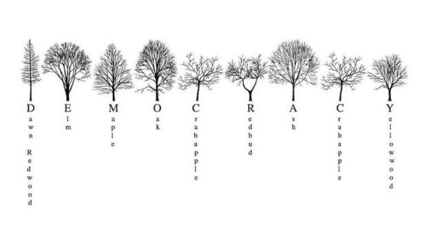 Ağaç Alfabesi